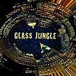 Andrew Beall Glass Jungle