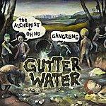 The Alchemist Gutter Water