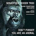 Sébastien Texier Quintet Don't Forget You Are An Animal (Feat. Henri Texier, Claude Tchamitchian, Sean Carpio)