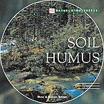 Dominique Verdan Nature Atmosphere: Soil Humus