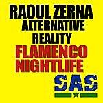 Raoul Zerna Flamenco Nightlife Ep