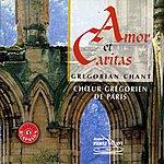 Choeur Grégorien De Paris Amor Et Caritas : Chant Grégorien
