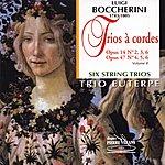 Euterpe Quartet Boccherini : Trios À Cordes