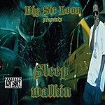 Big Sir Loon Sleep Walkin