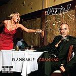 Antix Flammable Grammar