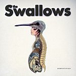 The Swallows Demystified