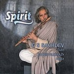 G.S. Sachdev Spirit