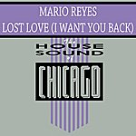 Mario Reyes Lost Love (I Want You Back)