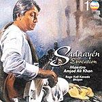 Amjad Ali Khan Sadaayén Evocation (Raga Kafi Kanada Bhajan)