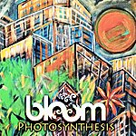 Bloom Photosynthesis