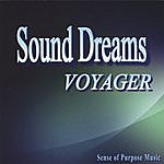 The Voyager Sound Dreams