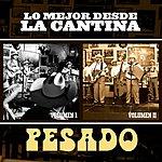 Pesado Lo Mejor Desde La Cantina (Live At Nuevo León México/2009)