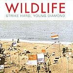 Wild Life Strike Hard, Young Diamond
