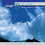 Vincent Bruley Oxygen 13: The Storm (Music And Sea Whirlpools)