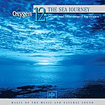 Vincent Bruley Oxygen 12: The Sea Journey (Music And Blue-Tinged Mysteries)