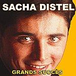 Sacha Distel Sacha Distel : Grands Succès