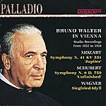 Bruno Walter Bruno Walter In Vienna - Studio Recordings From 1935 To 1938