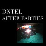 Dntel After Parties 1