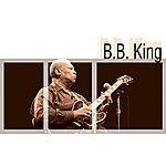 B.B. King B.B.King