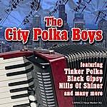 The City Polka Boys Beautiful Groove