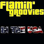 The Flamin' Groovies In The Usa