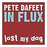 Pete Dafeet In Flux