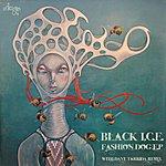 Black Ice Fashion Dog