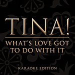Tina Turner What's Love Got To Do With It (Karaoke Version)