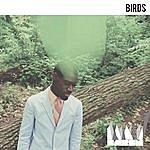 Baron Birds