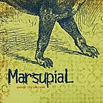 Marsupial Genus Thylacinus