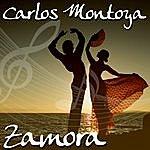 Carlos Montoya Zamora