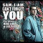 Samiam Can't Forget You