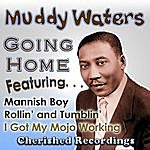 Muddy Waters Going Home