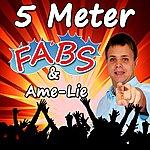 Fabs 5 Meter