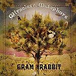 Gram Rabbit Miracles & Metaphors