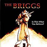 The Briggs Is This What You Believe?