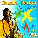 Charlie Parker Be-Bop Genius : Bird Of Paradise