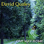 David Qualey One Way Home