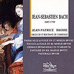 Jean-Patrice Brosse Bach : Jean-Patrice Brosse À L'orgue De St-Bertrand De Comminges