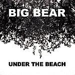 Big Bear Under The Beach