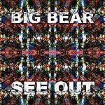 Big Bear See Out