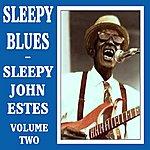 Sleepy John Estes Sleepy Blues - Volume 2