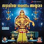 Srinivas Swamiye Sharanam Ayyappa