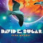 David E. Sugar Flea Market (6-Track Maxi-Single)