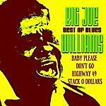 Big Joe Williams Best Of Blues