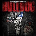 Bulldog Pogo, Punk Y Sentimiento