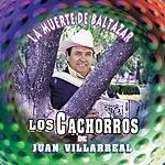 Los Cachorros De Juan Villarreal La Muerte De Baltazar