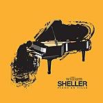 William Sheller Piano En Ville