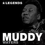 Muddy Waters Legends