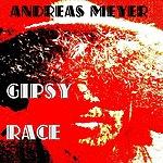 Andreas Meyer Gipsy Race